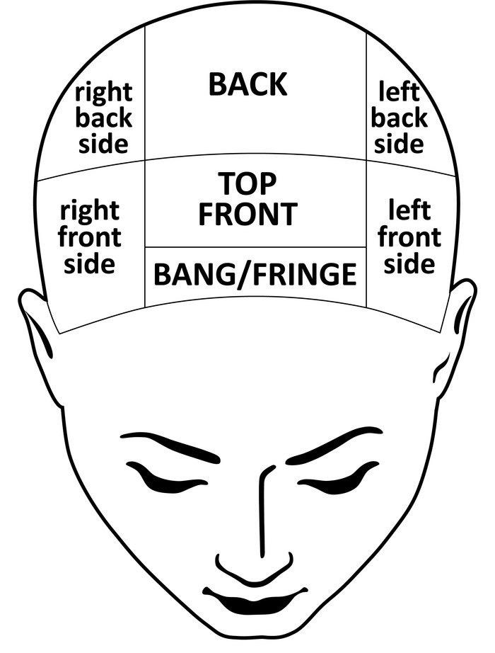 man-head-divisions-scheme-vector-18358668